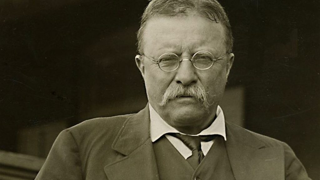 Interesting Facts about the 26th President of the US, Theodore Roosevelt